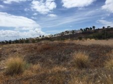 Land, La Caleta, Adeje, Property for sale in Tenerife: