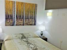 One bedroom, Playa de Las Americas, Adeje
